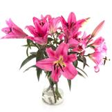 Cadeaux & Fleurs